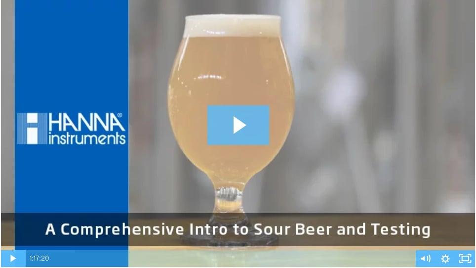 Sour-Beer